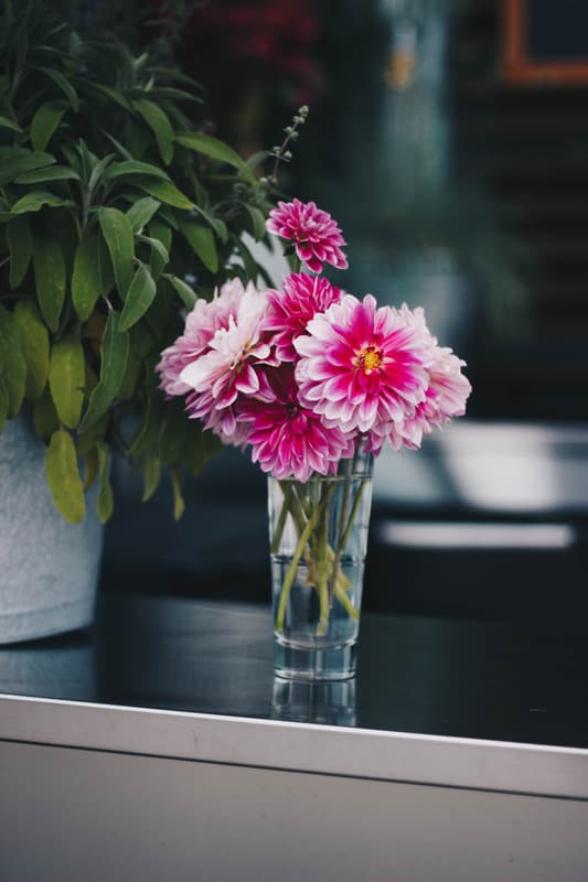 Using Parts Of a Flower To Improve Your Home