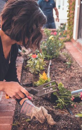 Tools That Will Help In Vegetable Gardening For Beginners