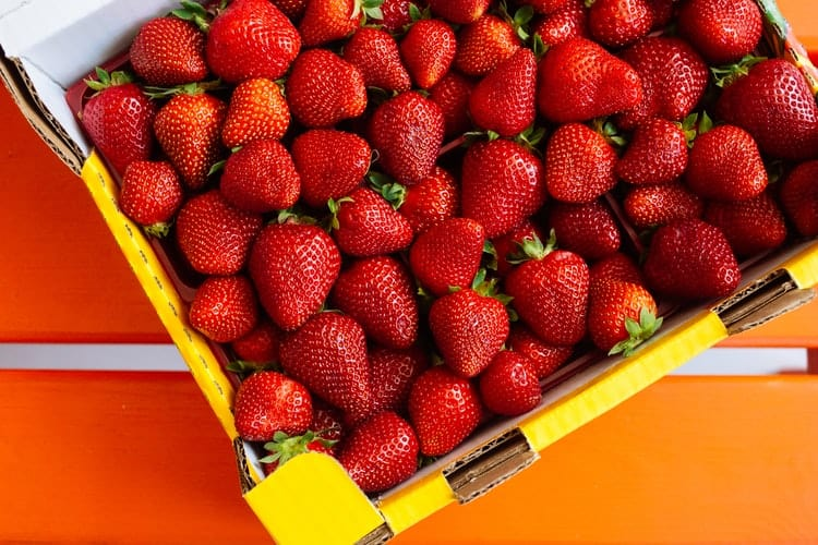Strawberry Fruit Rack And Other Garden Products For You
