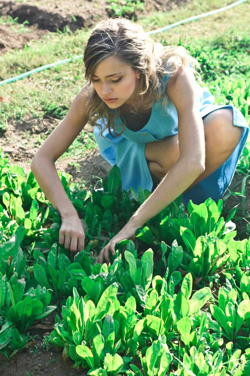 Top 3 Products To Enhance The Benefits Of Gardening