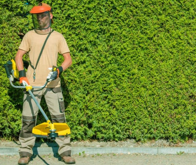 Best String Trimmer For Lawn Care