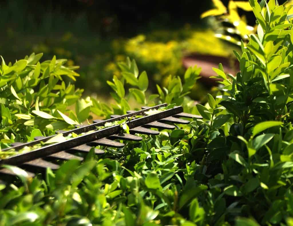 How Should You Use A Grass Trimmer