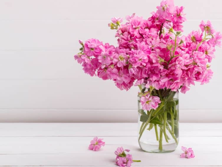 The Most Fragrant Flowers For A Home Or Garden