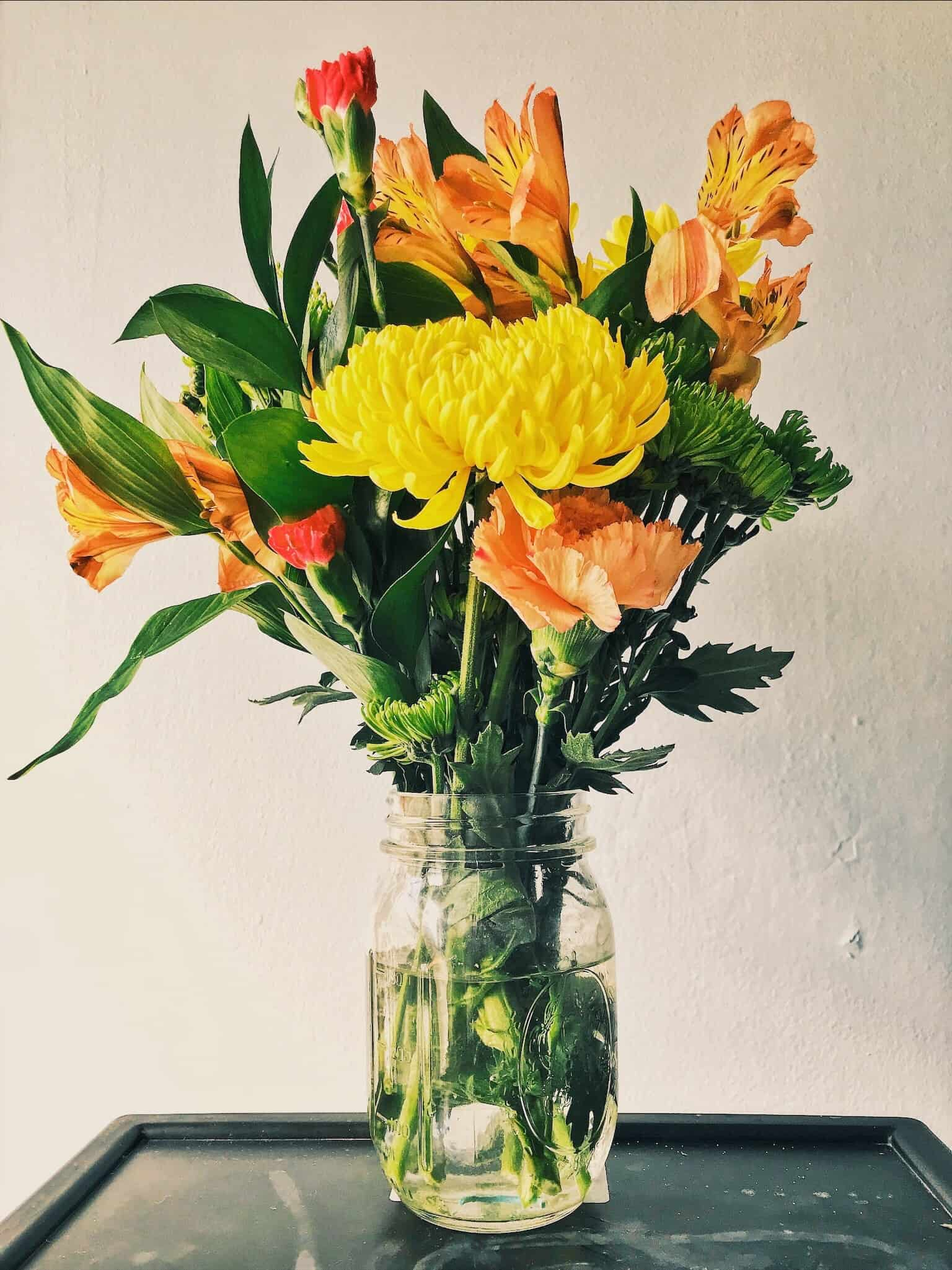 Learn How To Grow Flowers Indoors