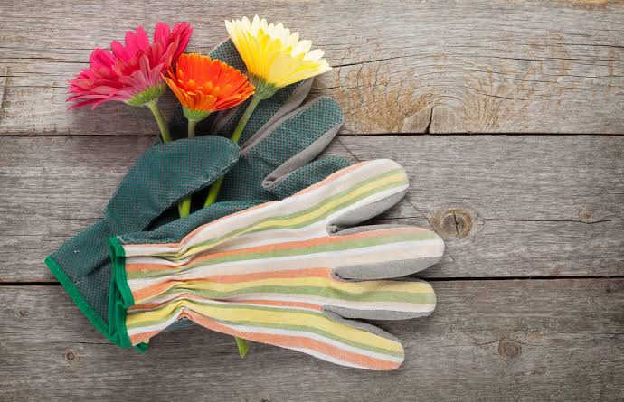 Tips on how to use Gardening Gloves Argos for users