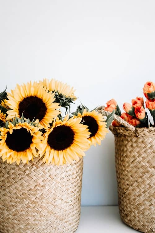 Popular Sunflower Wedding Worth