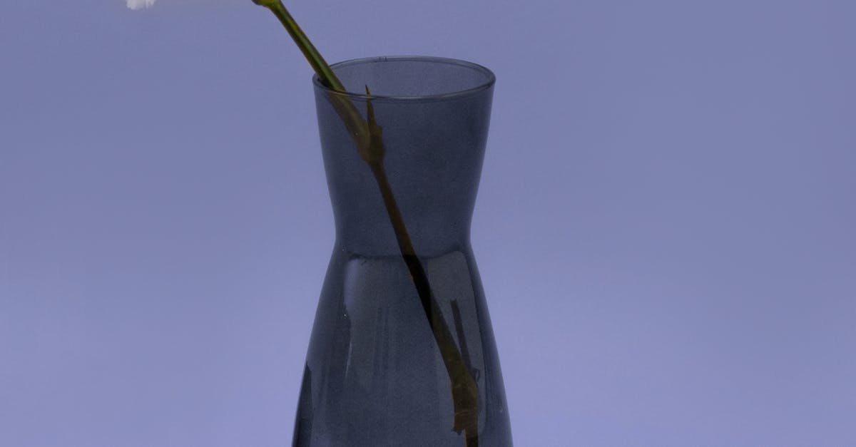 A glass with a blue vase