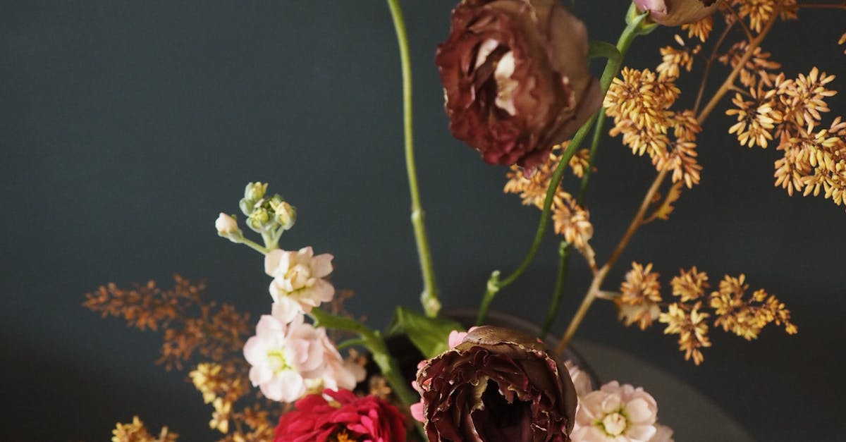 dry flowers decoration for home